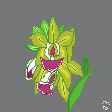 44. Green Orchid Flower.jpg