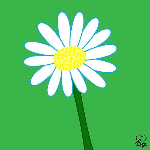 26. Daisy.jpg