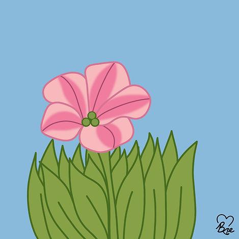 55. Petunia.jpg
