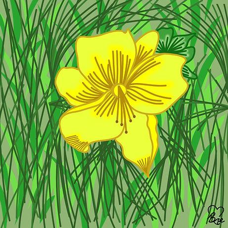 13. Yellow Daylily.jpg