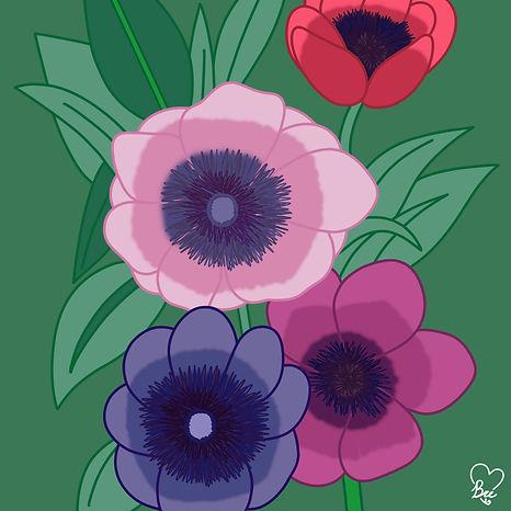 62. Anemone.jpg