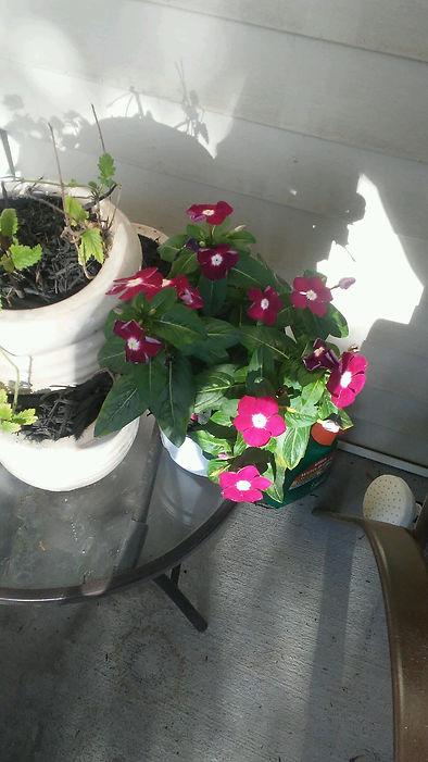 Porch Table Flowers 1.jpg