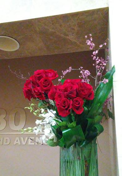 Roses 380 2nd.jpg