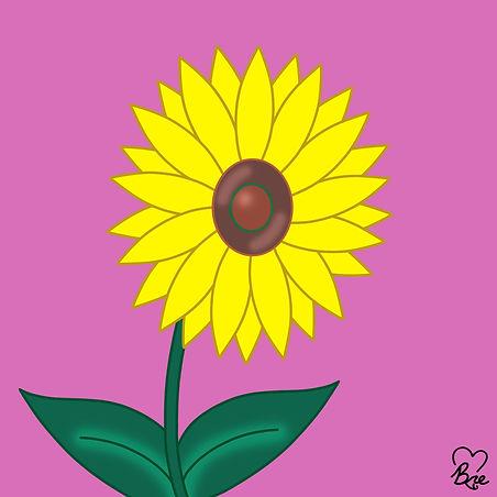 43. Sunflower.jpg