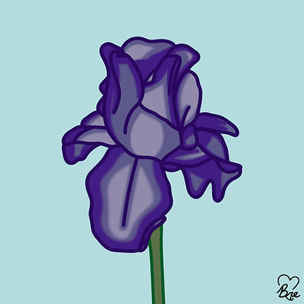 Iris Flower.jpg