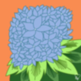 38. Blue Hydrangeas.jpg