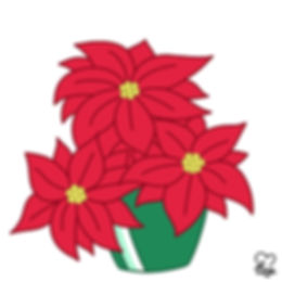 28. Poinsettia.jpg