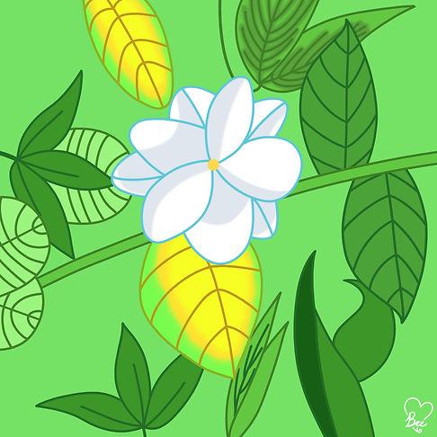 69. Jasmine Flower.jpg