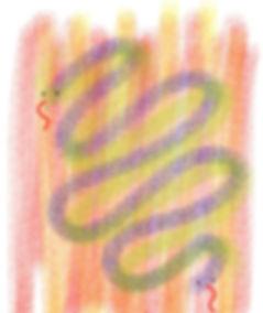 2 Twisty Snakes Memo.jpg
