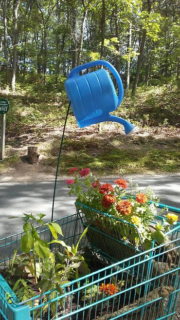 Blue Balloon Watering Pot 2.jpg
