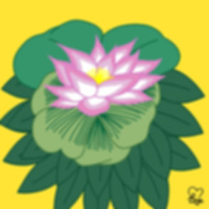 39. Japanese Lotus Flower.jpg