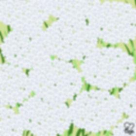20. Lace Flowers.jpg