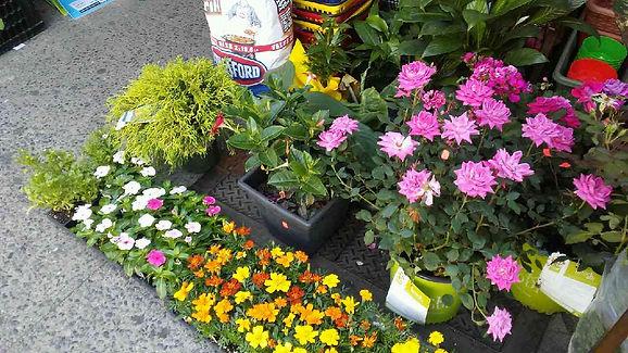 Discount Store Flowers.jpg