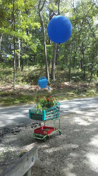 Blue Balloon Watering Pot 1.jpg