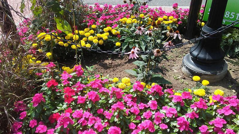 Rockville Center Flowers 1.jpg