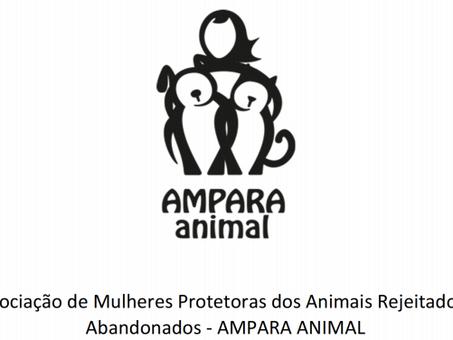 Como ajudamos na proteção dos animais?