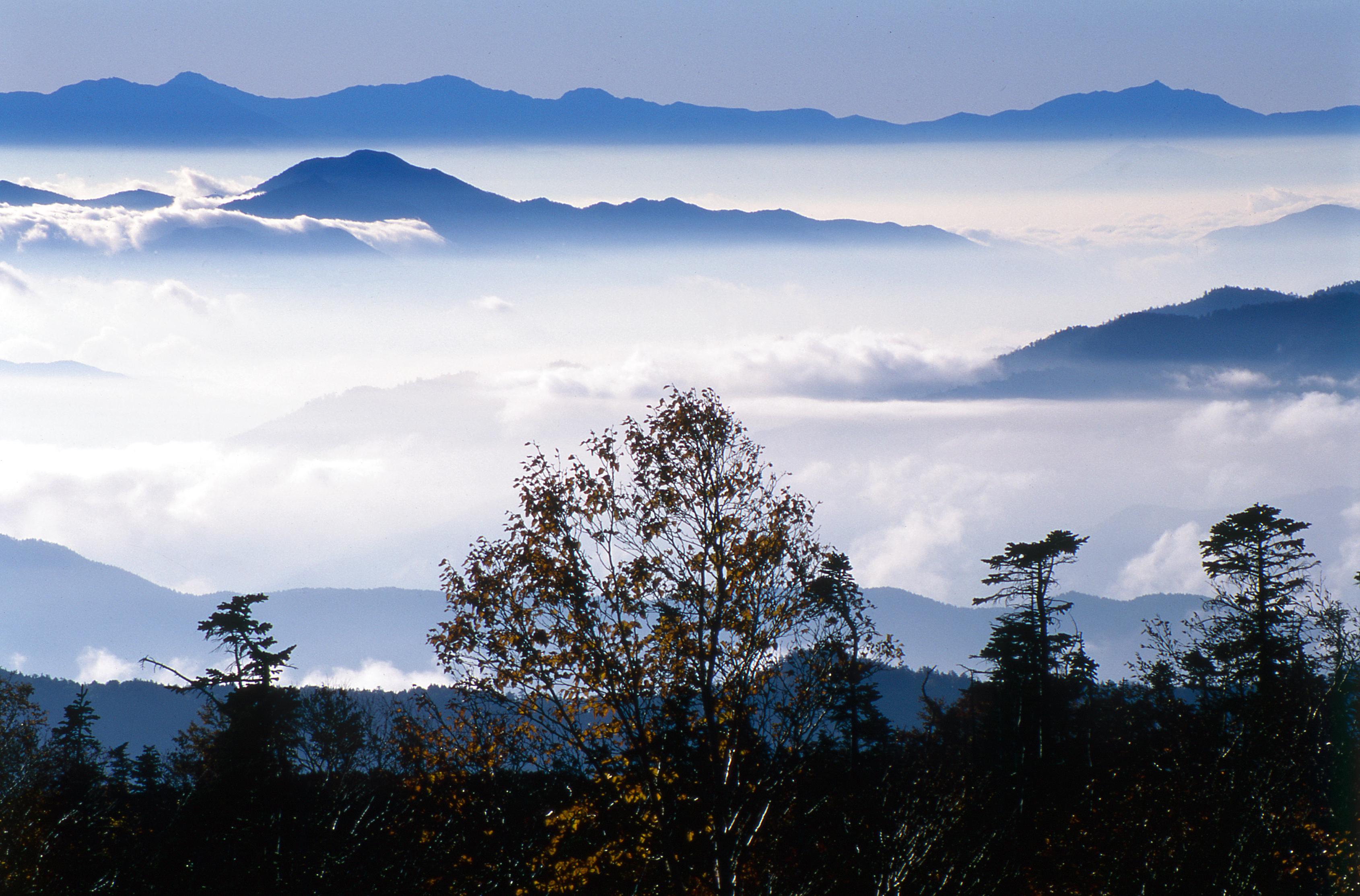 ak0503604085乗鞍雲海の風景(乗鞍)