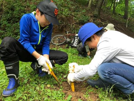 《イベント情報》 かまばの森探検隊