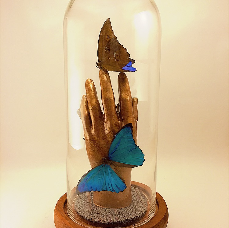 Centerpiece - Medium hand male, morphos back