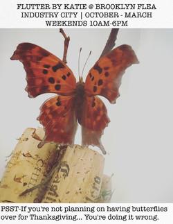 Question Mark Butterfly (closeup)