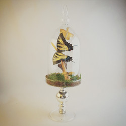 Pedestal Eastern Tiger Swallowtail