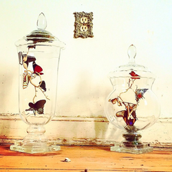 Custom Jars   Victorian House Reno