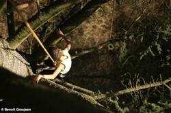 grimpe_d'arbre_74_la_corde_joux_haute_savoie_education_environnement_activité_physique_de_pleine_nat