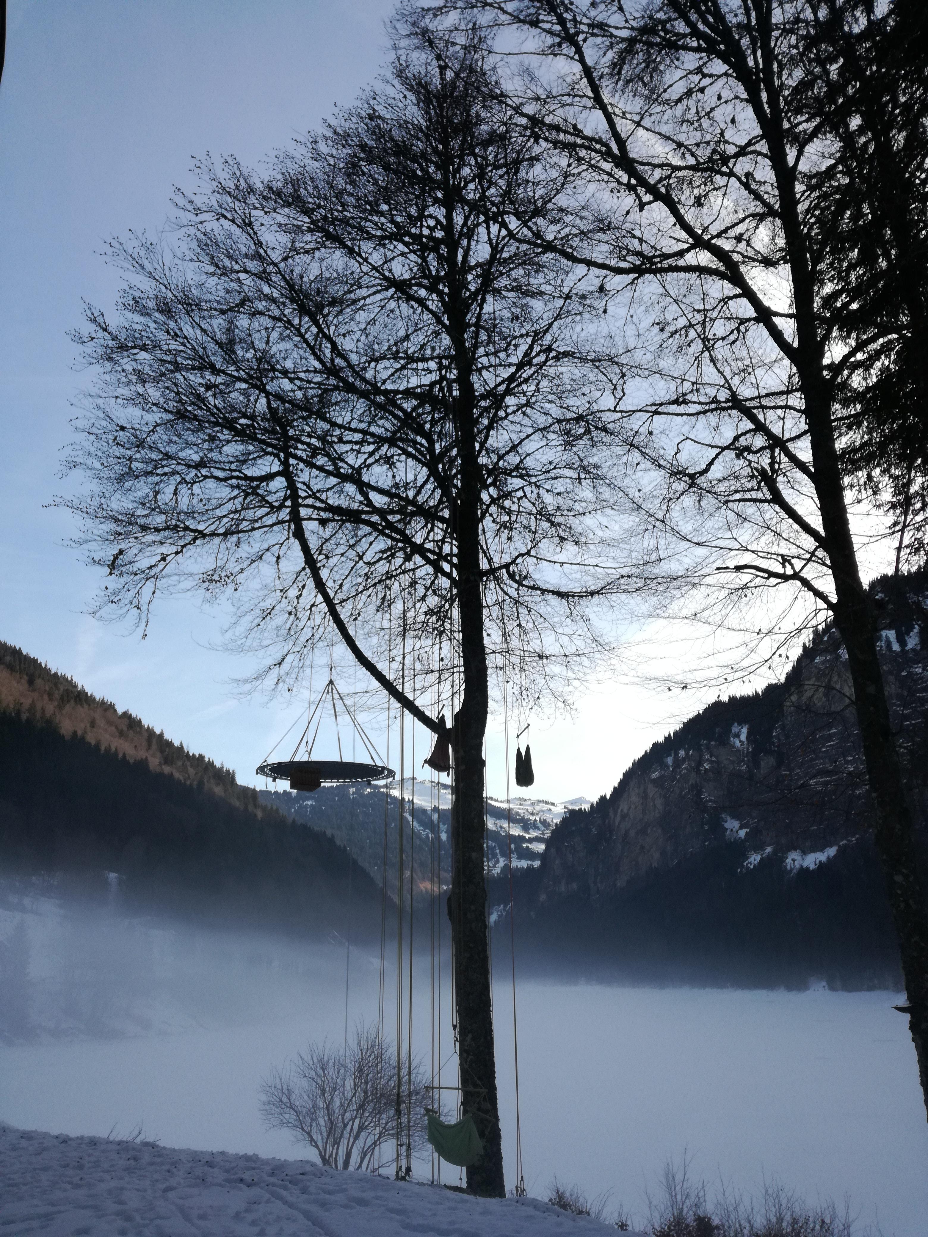 Grimpe_d'arbres_la_corde_joux_haute_savoie_activité_pleinne_air_xavier