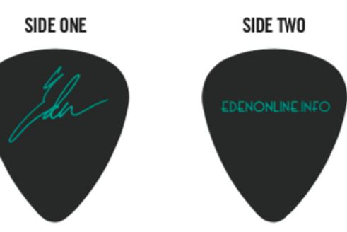 Autographed Guitar Picks (Eden)
