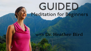 Meditation Newsletter