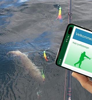 fisketegn-online.jpg