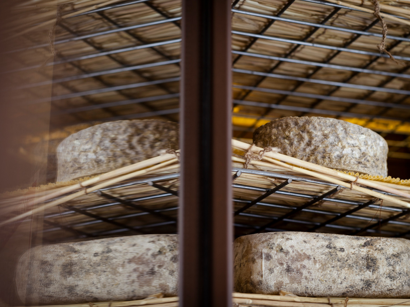Chambre Froide Fromages