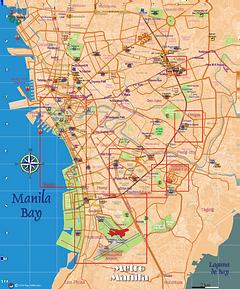 Metro Manila 2020