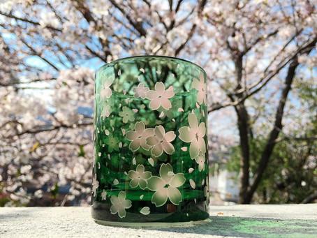 翠桜グラス限定販売