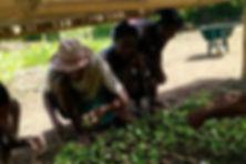 reforestation madagascar vegabottleGO gourde écologique