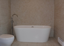 Free Standing Bathtub and Faucet