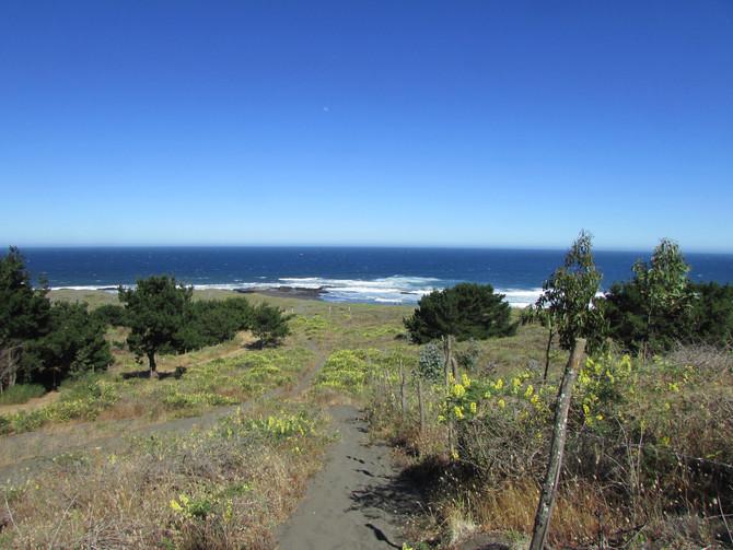 Curanipe, Chile