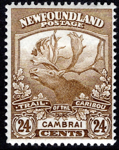 117, NSSC, Newfoundland, 24c bistre, MLHOG, F, Cambrai, Trail of the Caribou