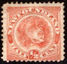 39a, NSSC, Newfoundland, 1/2c, orange red,Newfoundland Dog,Used, Scott 57