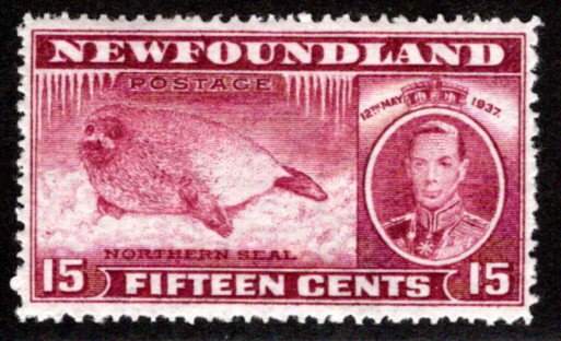 223b, NSSC, Newfoundland, 15c, INVERTED WATERMARK 6, MLHOG, C/V $100 USD
