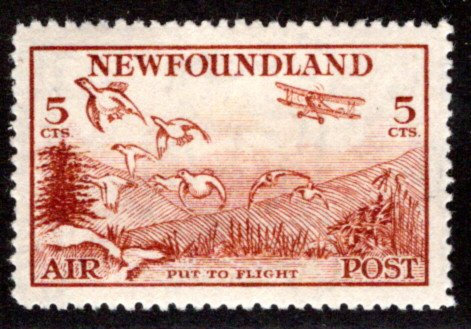 AM14a, NSSC, 5¢ Put to Flight, reddish brown, perf. 13.8,XF/SUPERB,Newfoundland