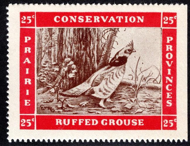 van Dam PC5 - MNHOG - Ruffed Grouse - Prairie Provinces Conservation Revenue Sta