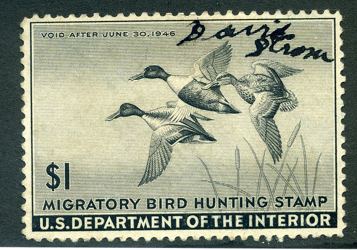RW12 1945 - US Department of the Interior - Shoveller Dicks - $1 MNH Duck Huntin