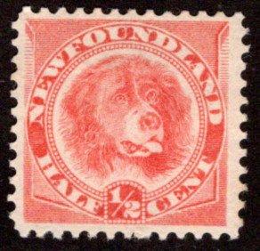 39a, NSSC, Newfoundland, 1/2c, orange red,Newfoundland Dog,MNG, F