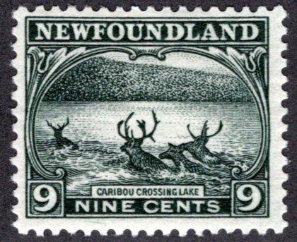 130, NSSC, Newfoundland, 9c, slate green, Caribou Crossing Lake, MLHOG, F