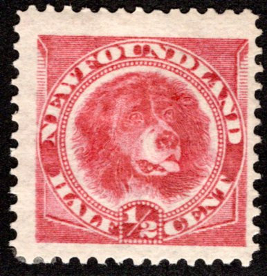 39, NSSC, Newfoundland, 1/2c, rose red,Newfoundland Dog,MLHOG, F