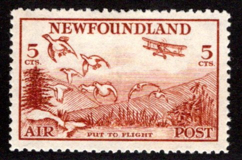 AM14a, NSSC, 5¢ Put to Flight, reddish brown, perf. 13.8 , Newfoundland Air Mail