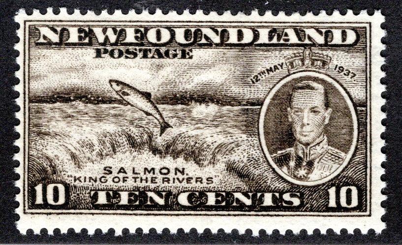 221, NSSC, Newfoundland, 10¢ Salmon, olive gray,MLHOG, F/VF