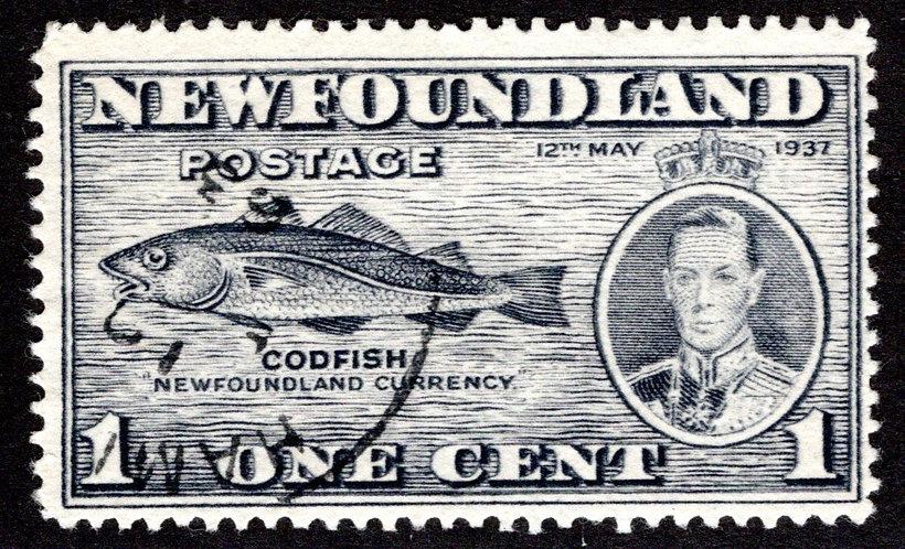 216bVI-1, NSSC, Newfoundland, 1c, PARTIAL DOUBLE PRINTED, MLHOG, Codfish