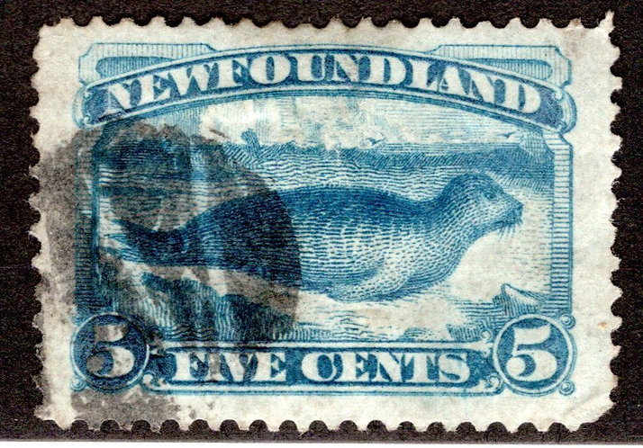 47a, NSSC, Newfoundland, 5c dark blue, Harp Seal, VF, Used, postage stamp